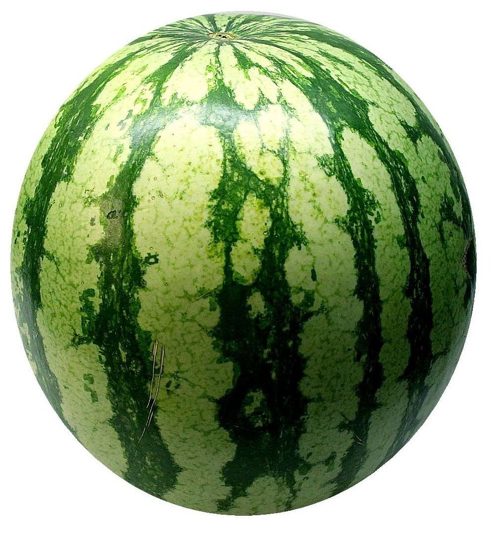 watermelon melon fruit free photo
