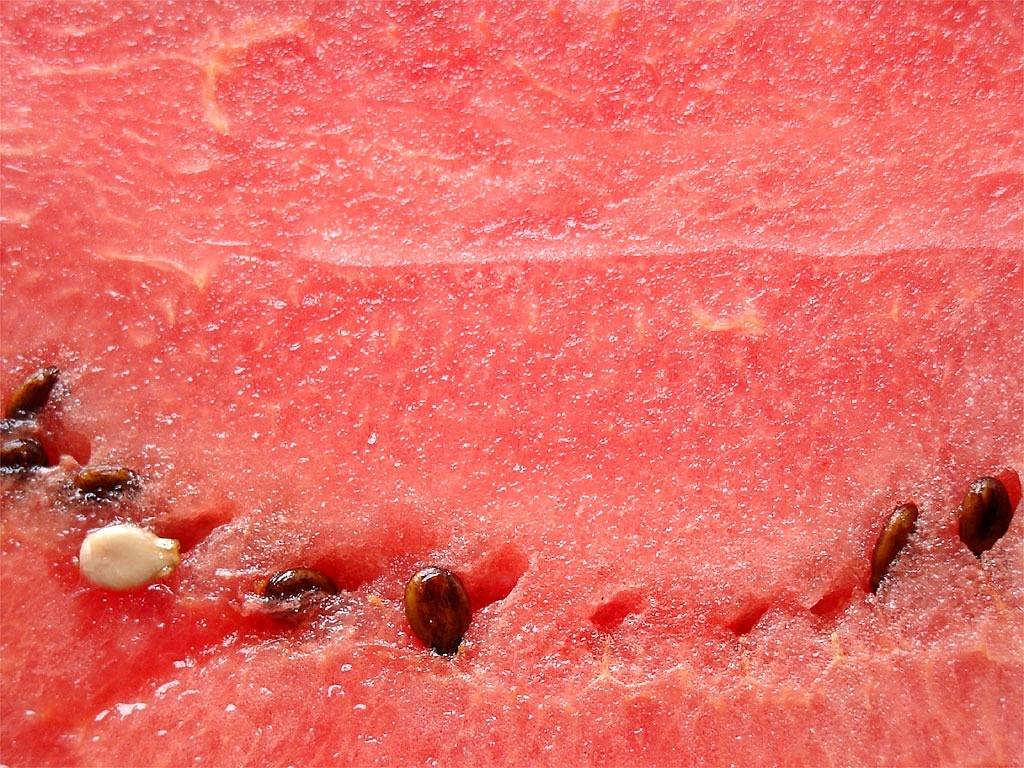 watermelon pulp melon free photo