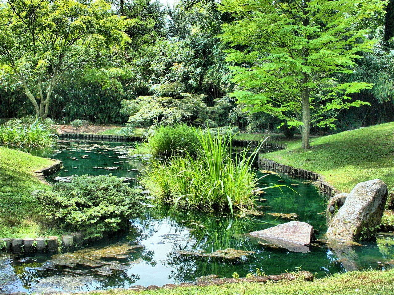 waterway garden pond free photo