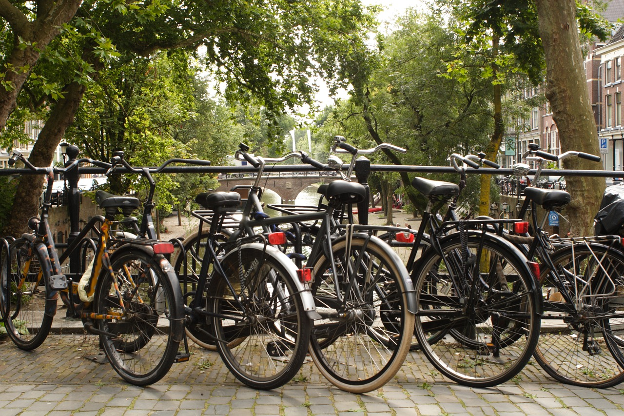 Image result for cycling holland