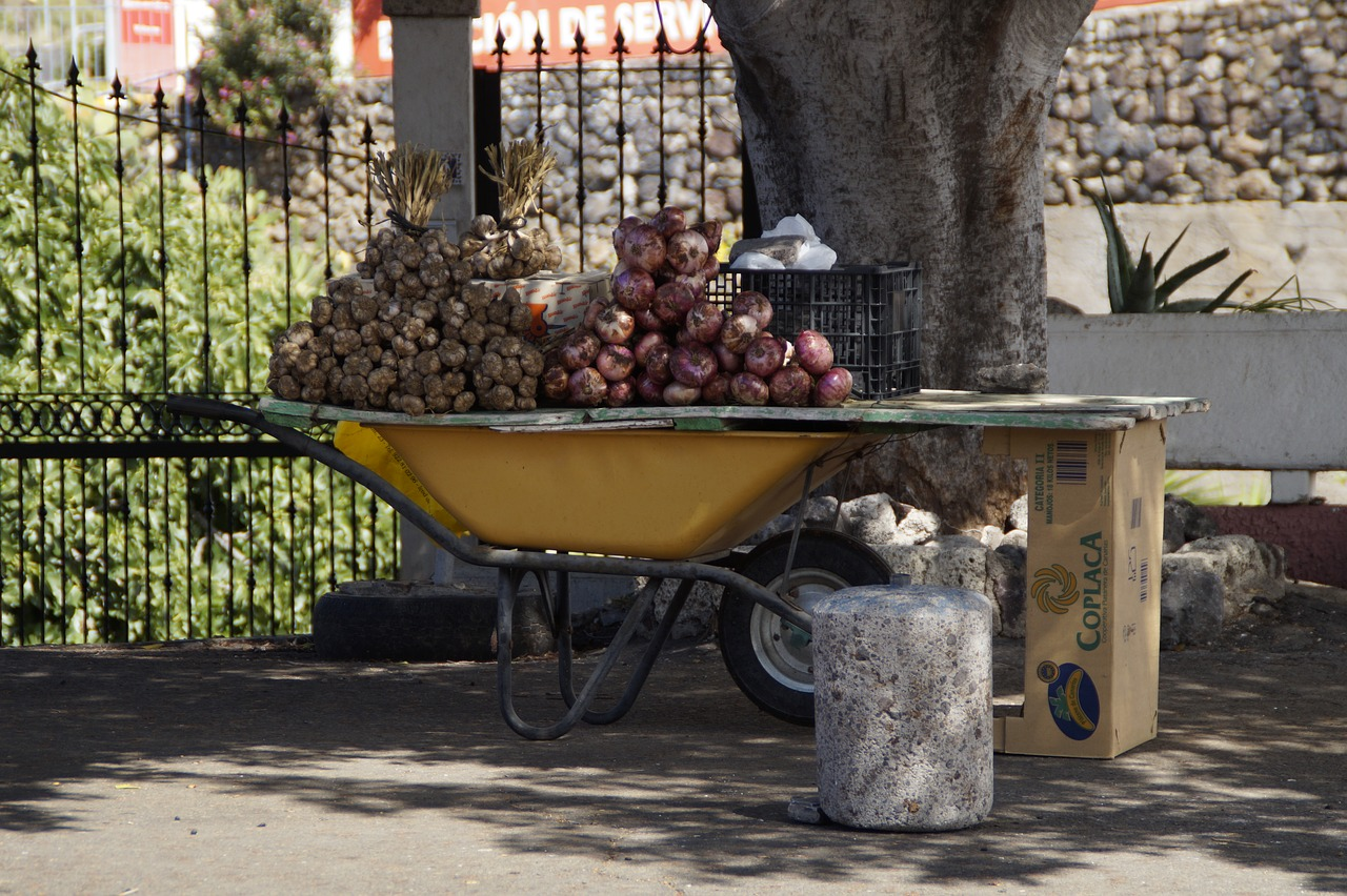 wheelbarrow sell agriculture free photo