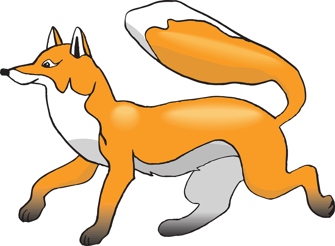 white orange fox free photo