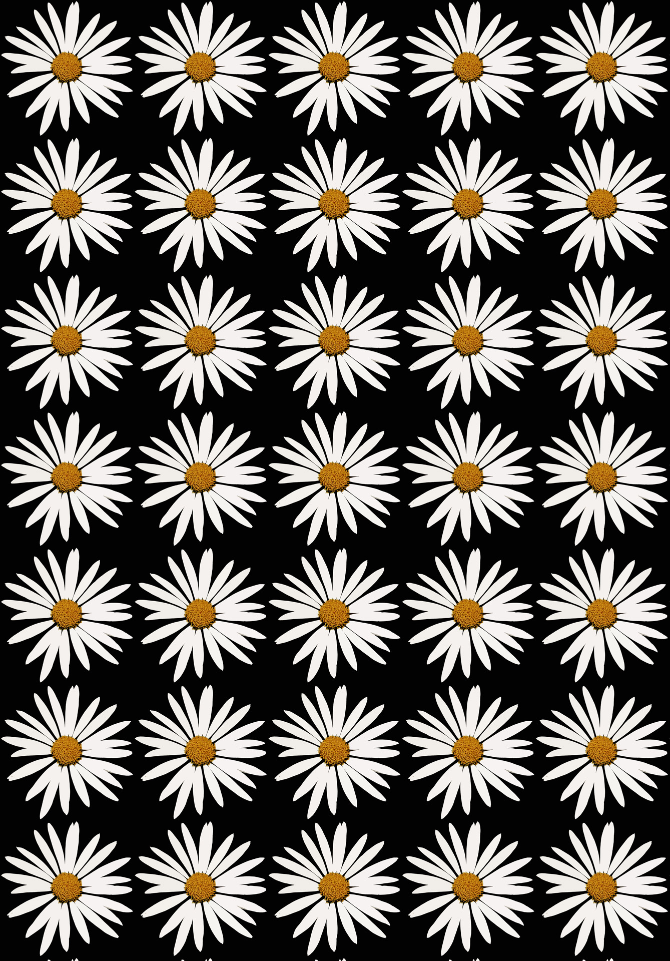 Daisy White Repeat Wallpaper Background Free Image From Needpix Com