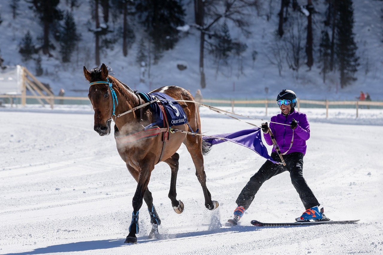 White Turf Horse Racing Ice Gefrohren Cold Free Image From Needpix Com