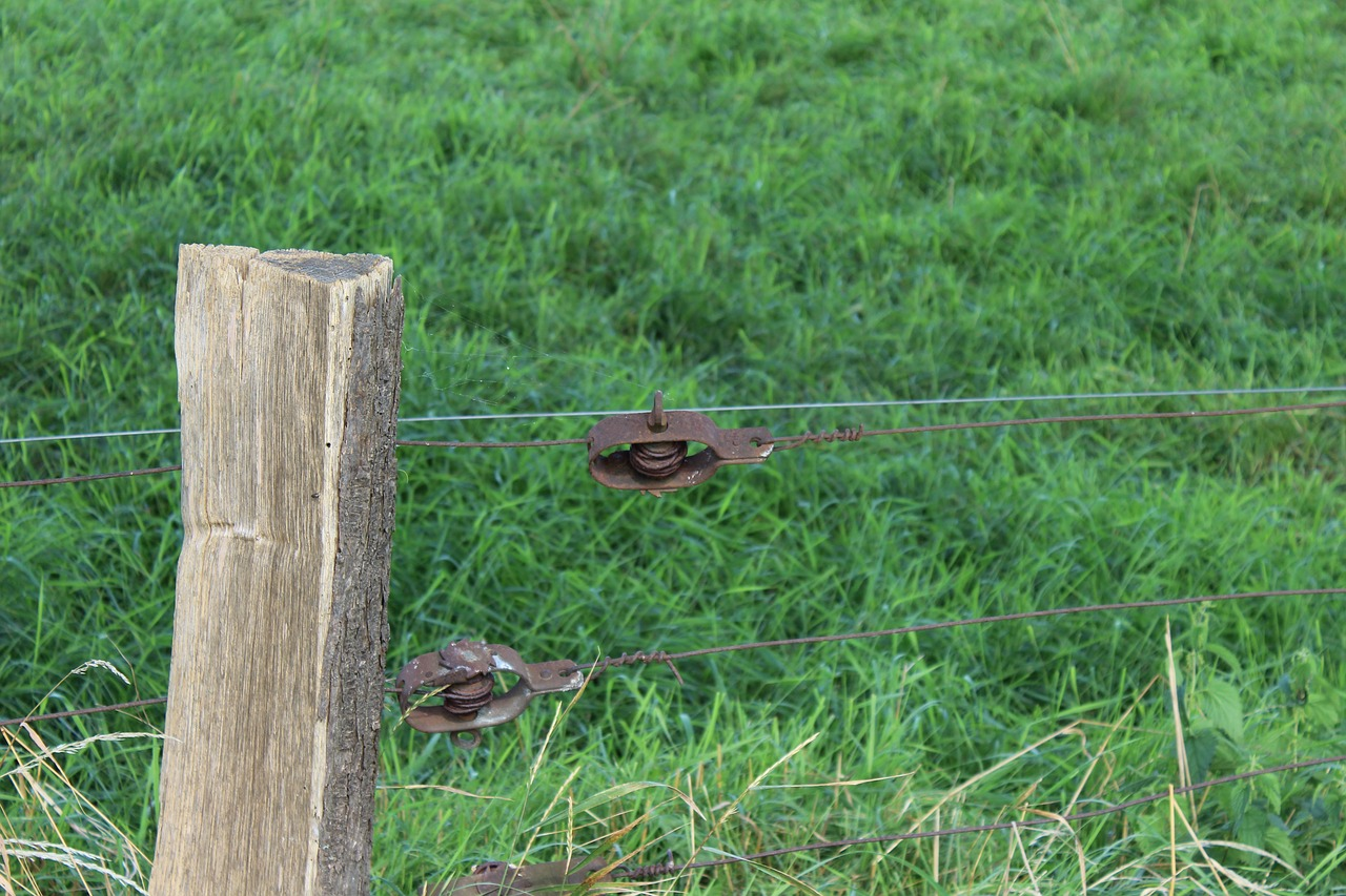 Wicker fence,fence,pasture,wire tensioner,nature - free photo from ...