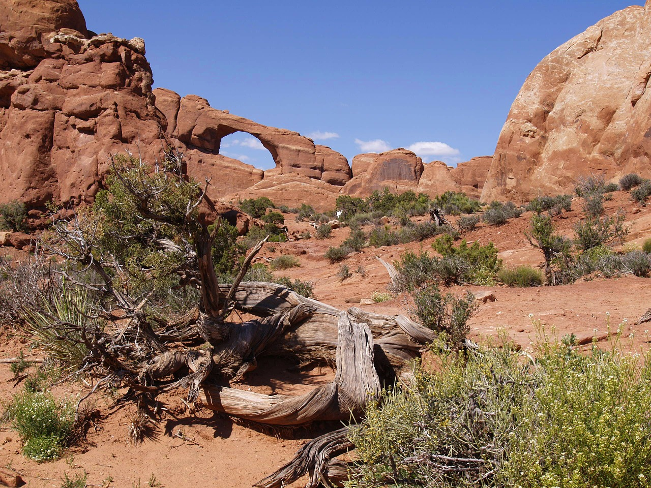 wilson arch,arches national park,utah,usa,southwest usa,moab,rock,arches,natural bridge,landscape,nature,beautiful,free pictures, free photos, free images, royalty free, free illustrations, public domain