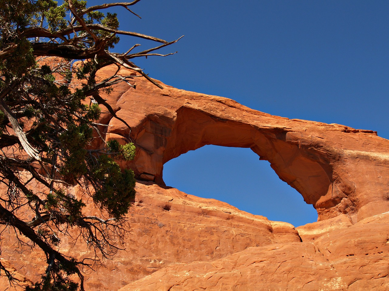 wilson arch red rocks free photo