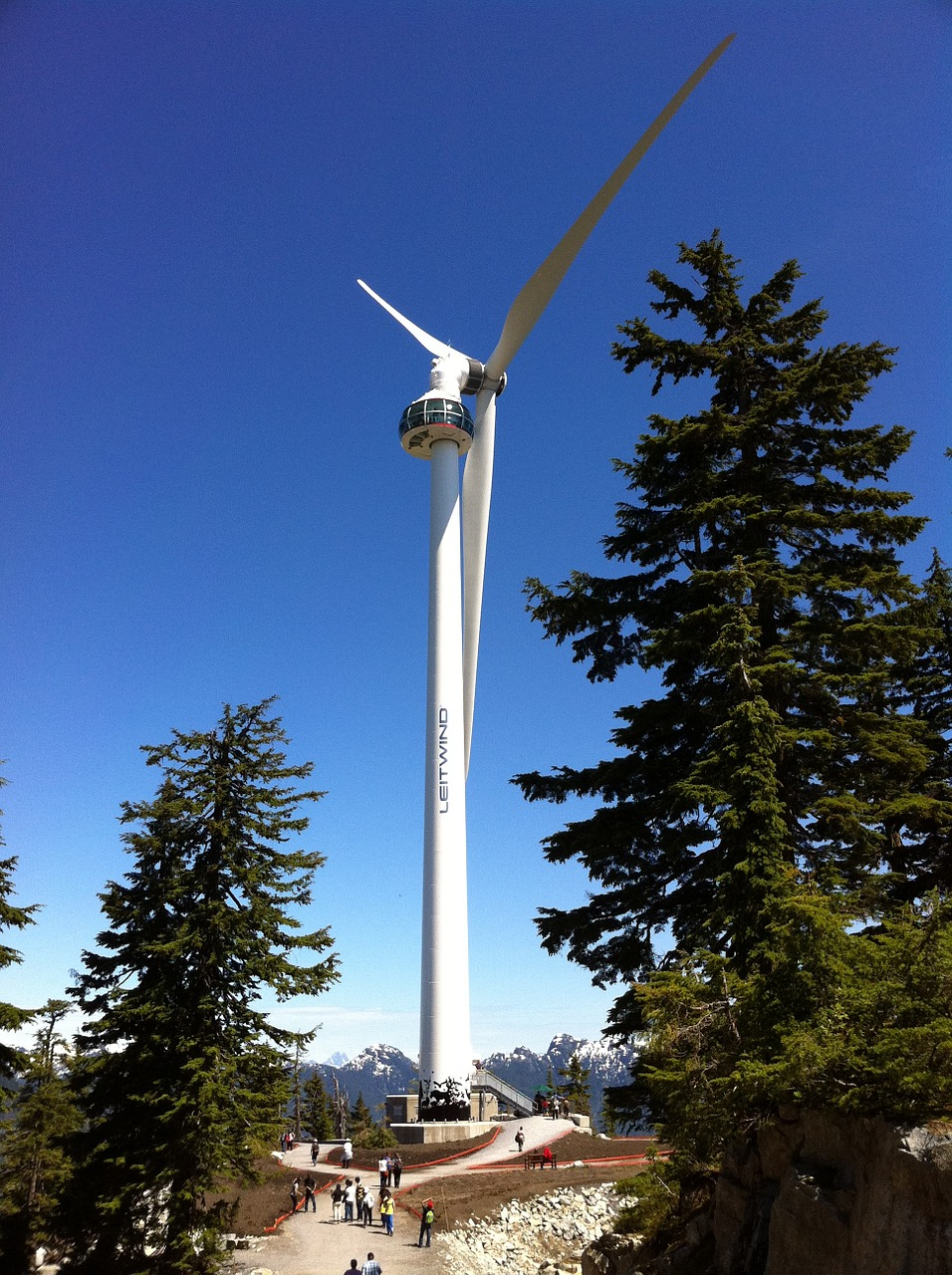 windmill forest wind free photo