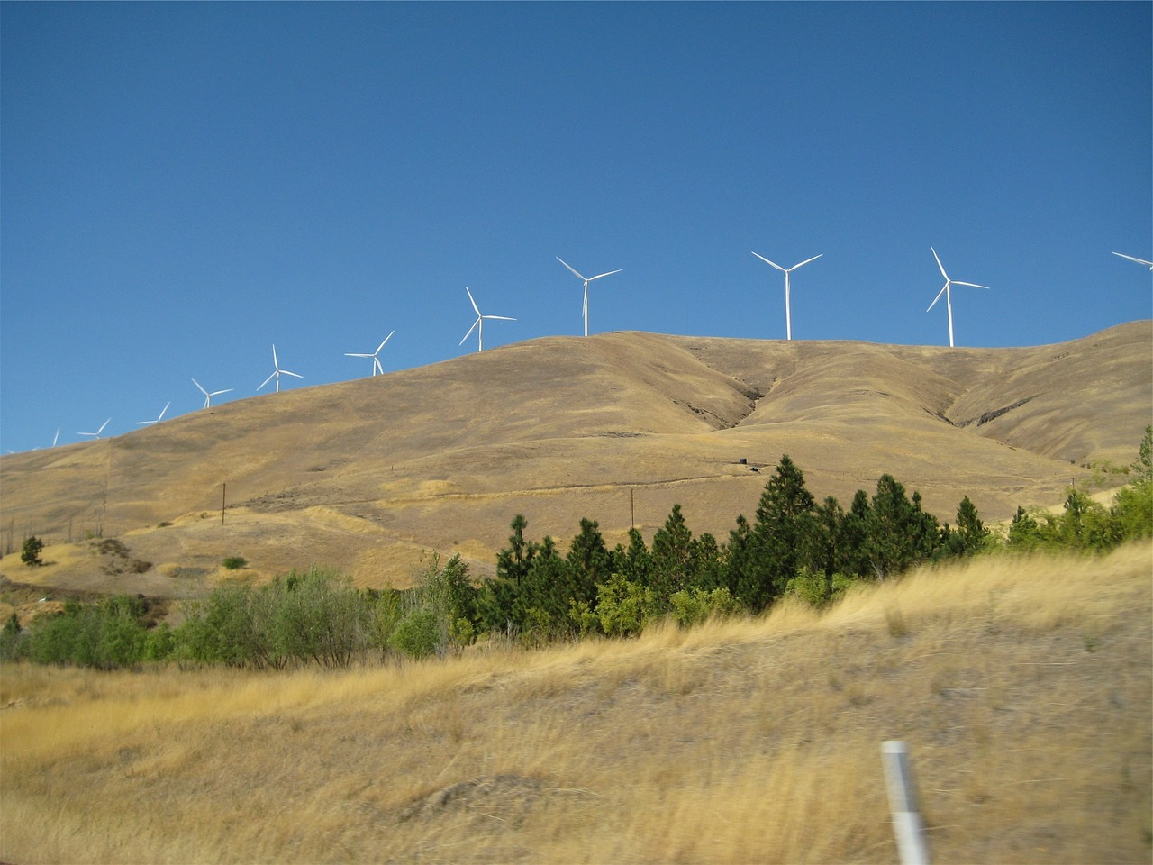 windmills hills fields free photo