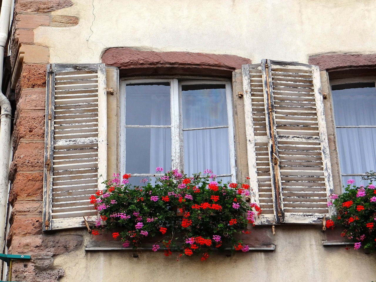 window shutters flowers free photo