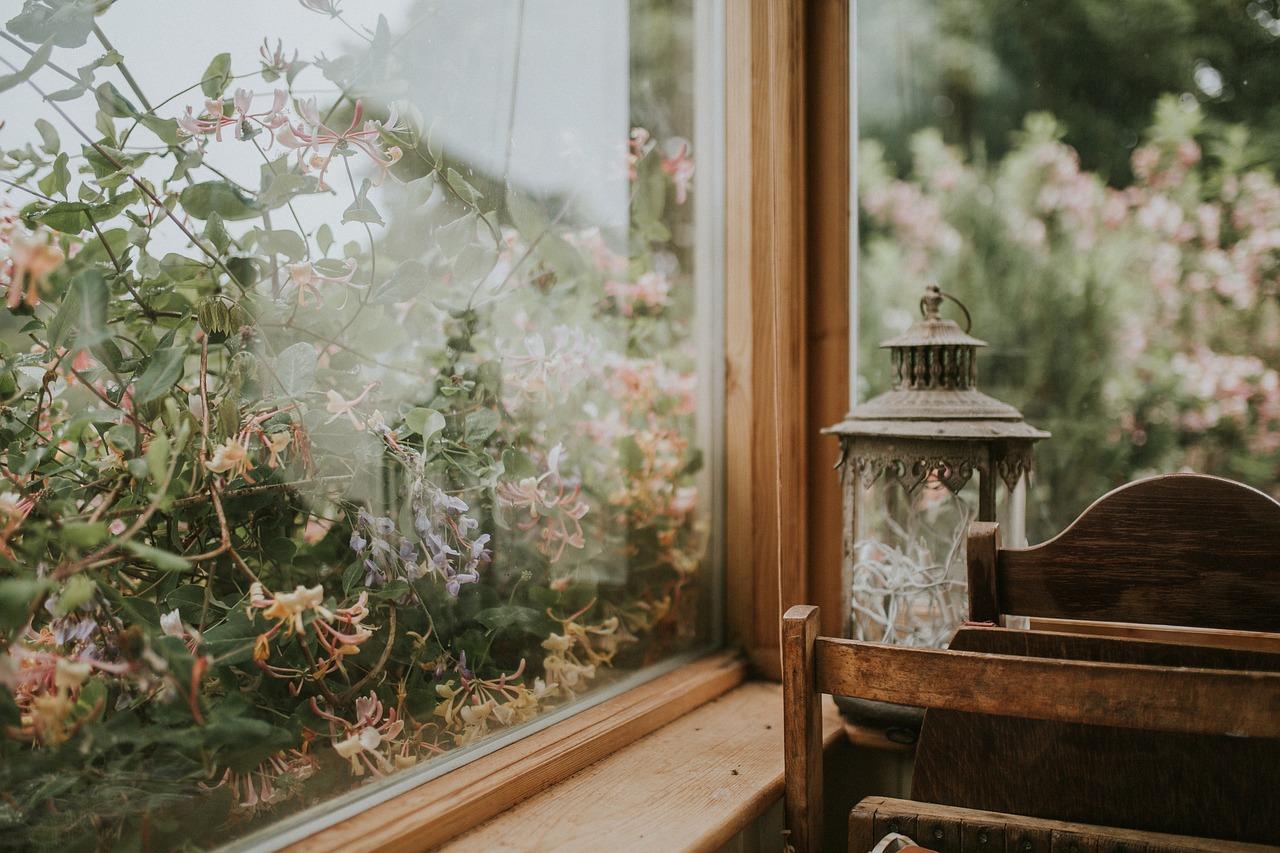 Window,glass,nature,garden,flowers - free photo from needpix.com