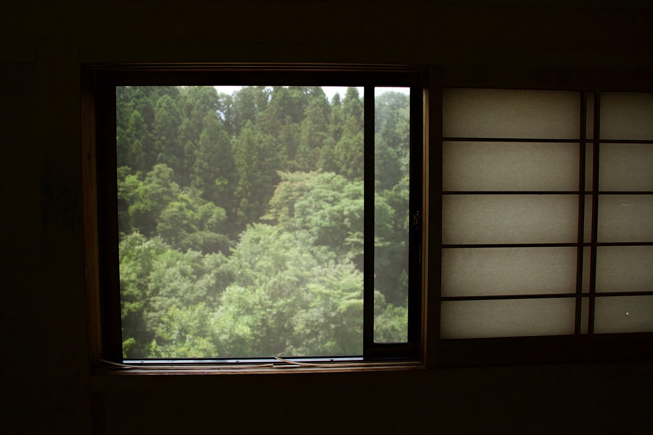 Image result for nature window
