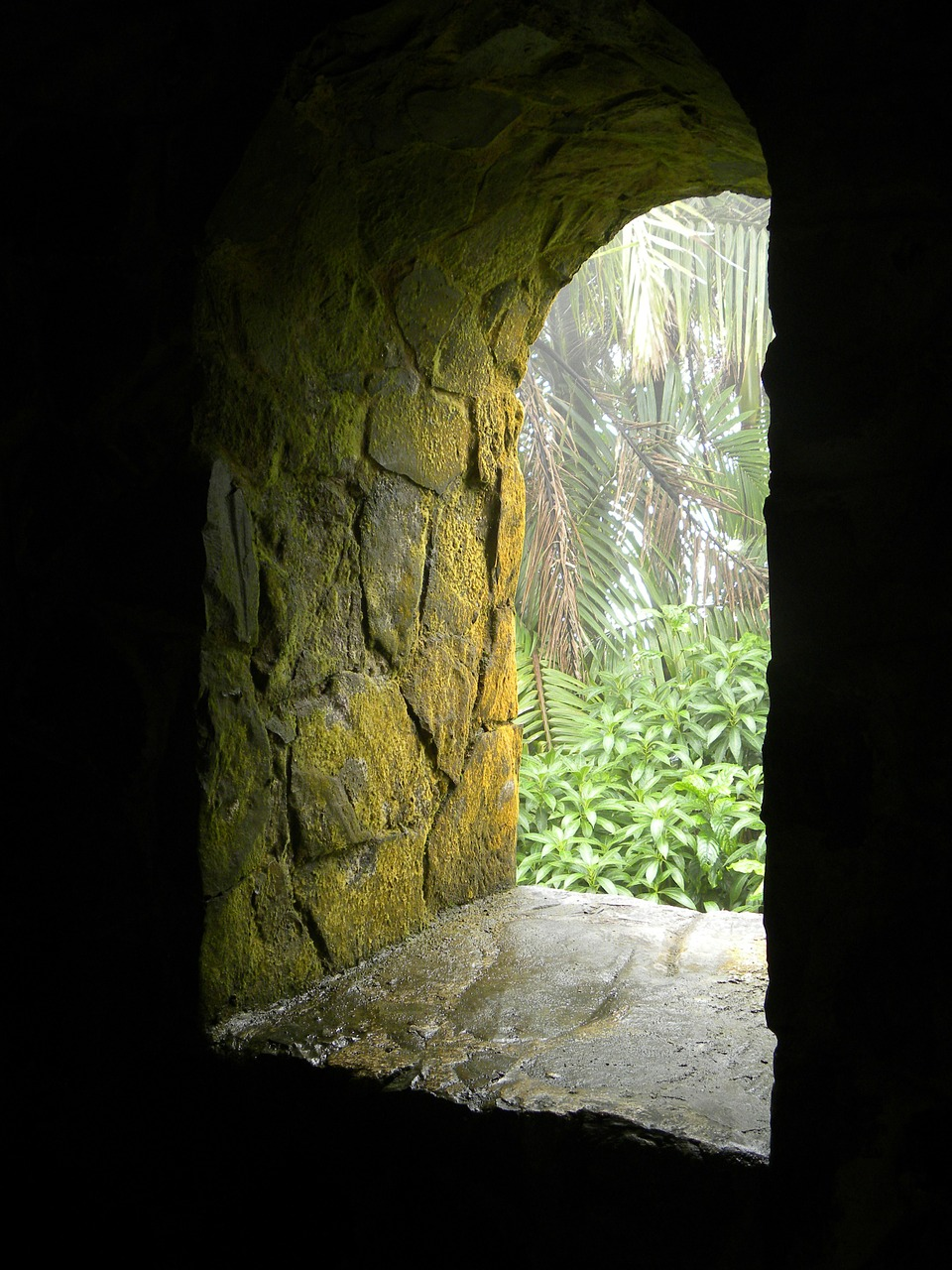 window portal stone free photo