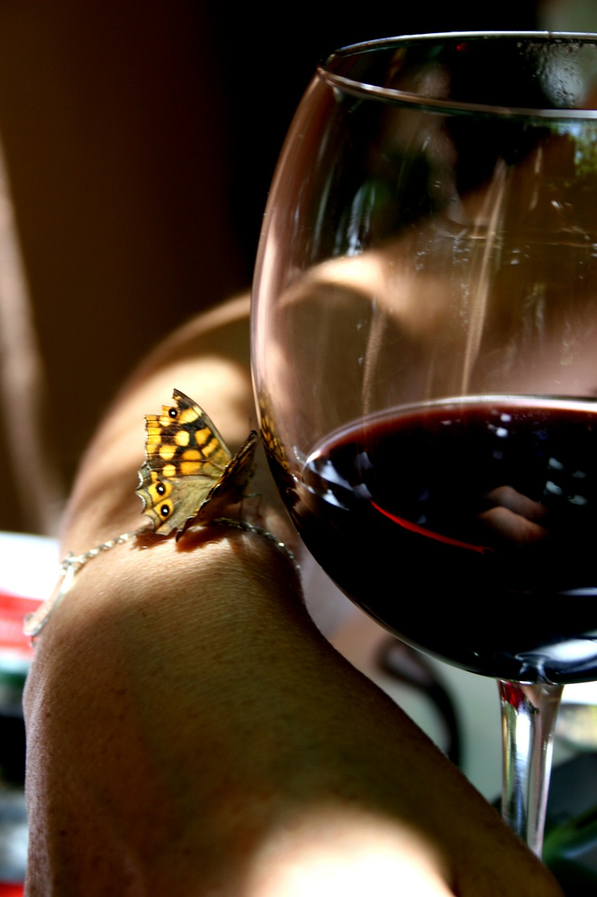wine butterfly glass free photo