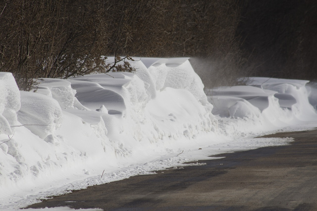 winter snow snowdrift free photo