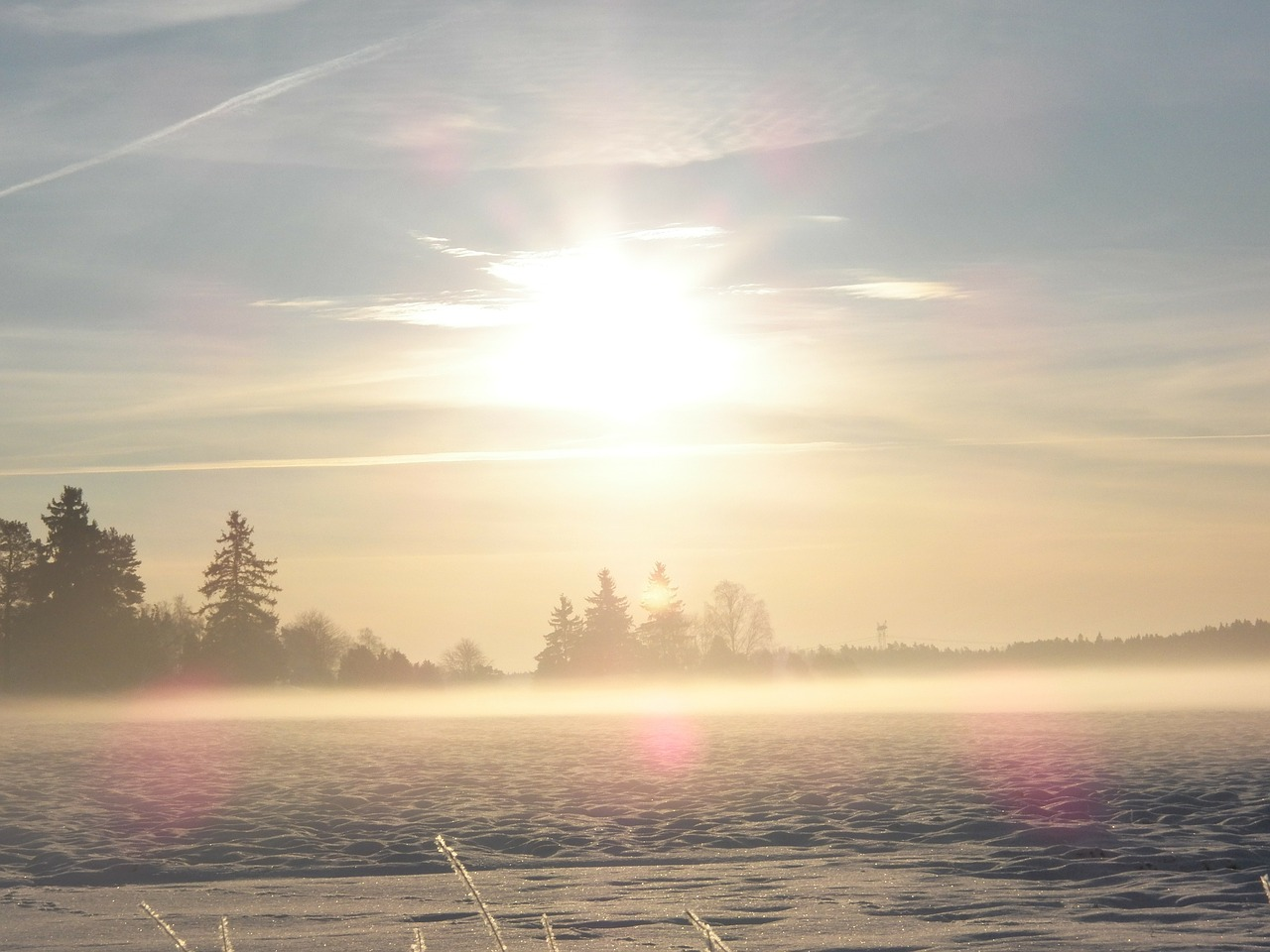 winter winter dream misty free photo