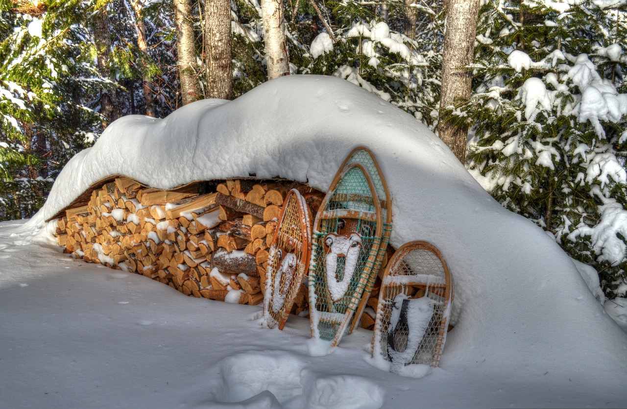 winter snowshoes snow free photo
