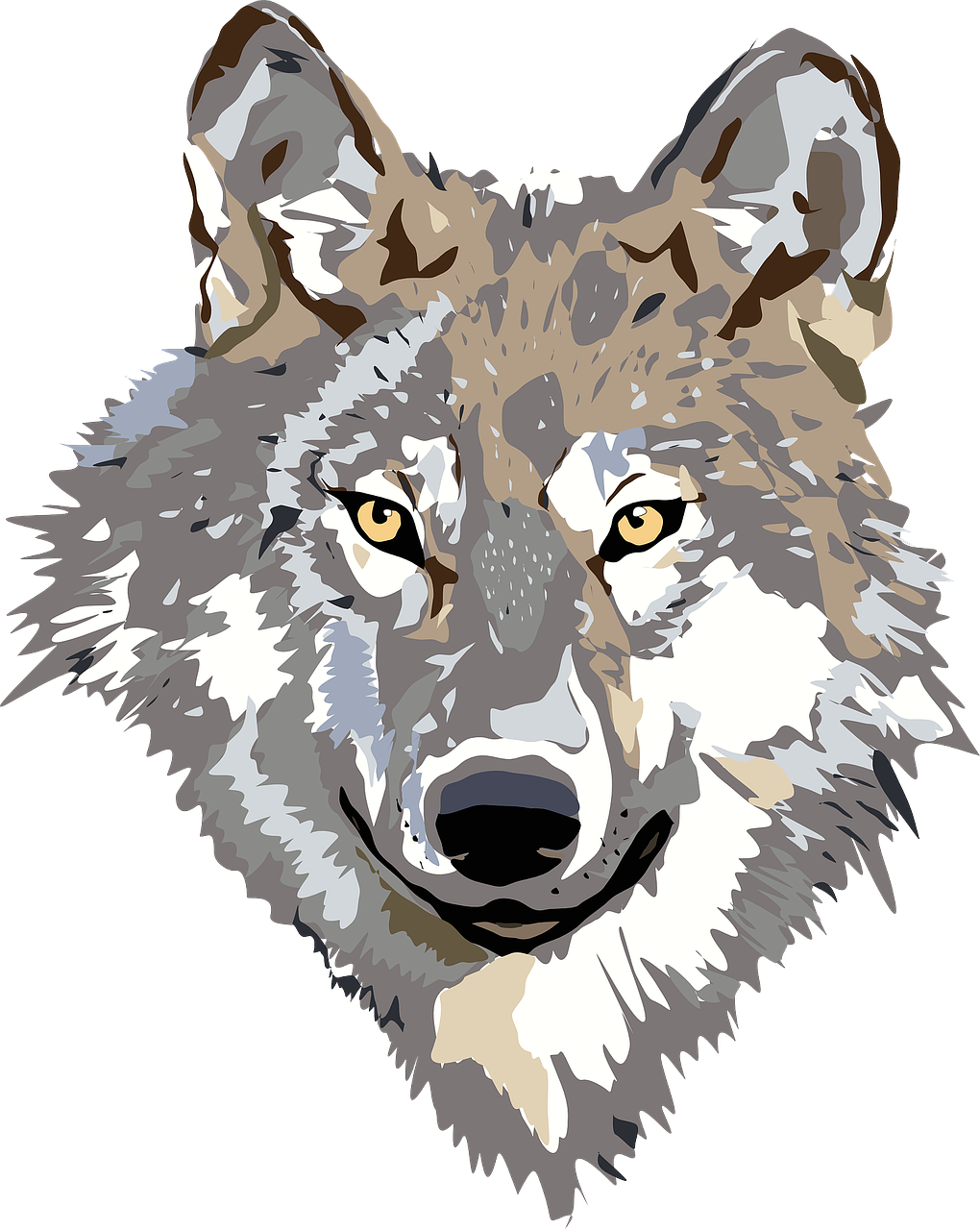 wolf,face,head,gray,brown,animal,wild,predator,wildlife,hunter,mammal,portrait,dangerous,carnivore,malamute,free vector graphics,free pictures, free photos, free images, royalty free, free illustrations, public domain
