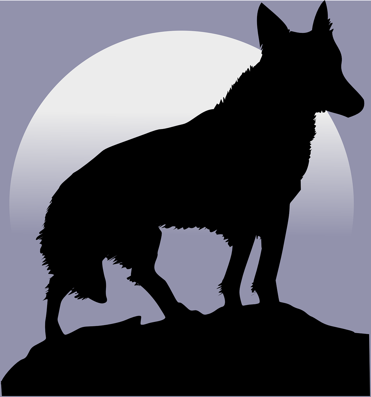 wolf silhouette moon free photo