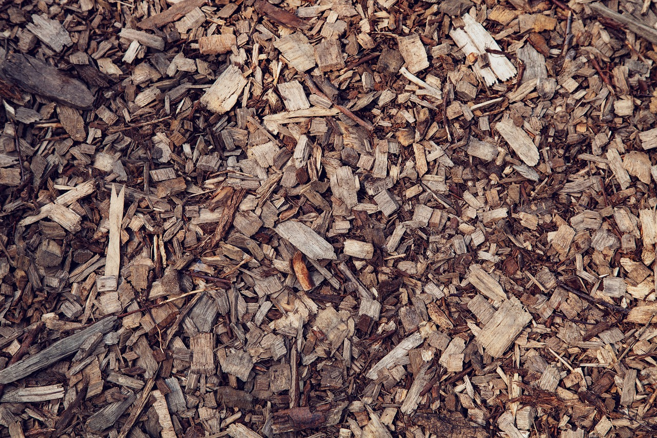 wood  chips  sawdust free photo