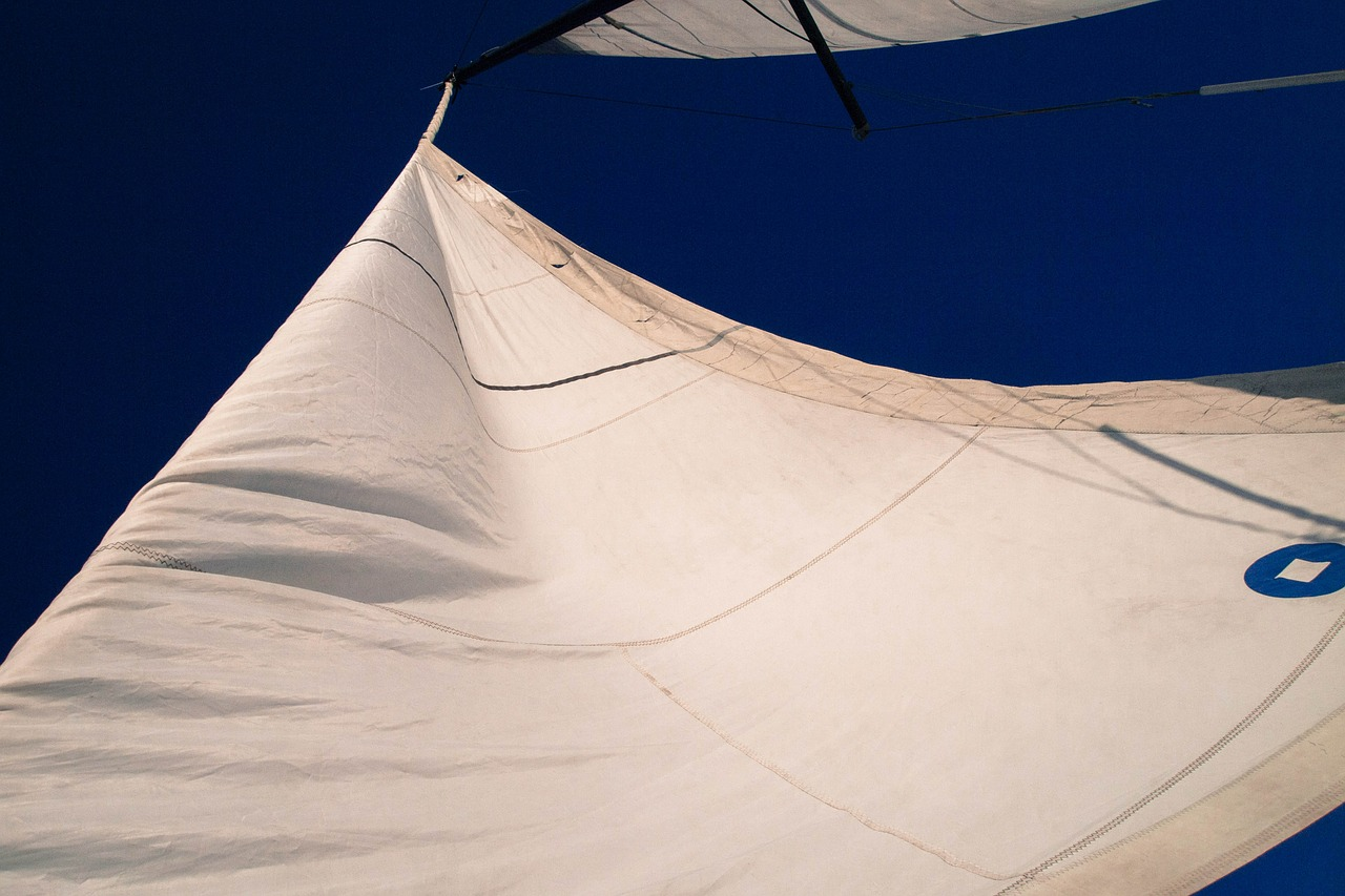 yacht,the sail,water,wind,free pictures, free photos, free images, royalty free, free illustrations