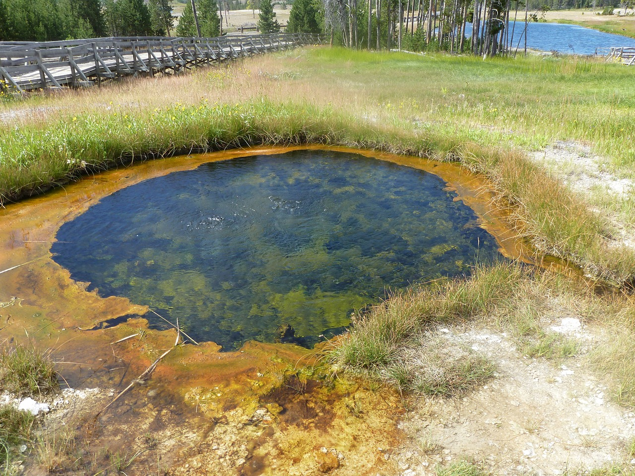 yellowstone national park geyser crater free photo