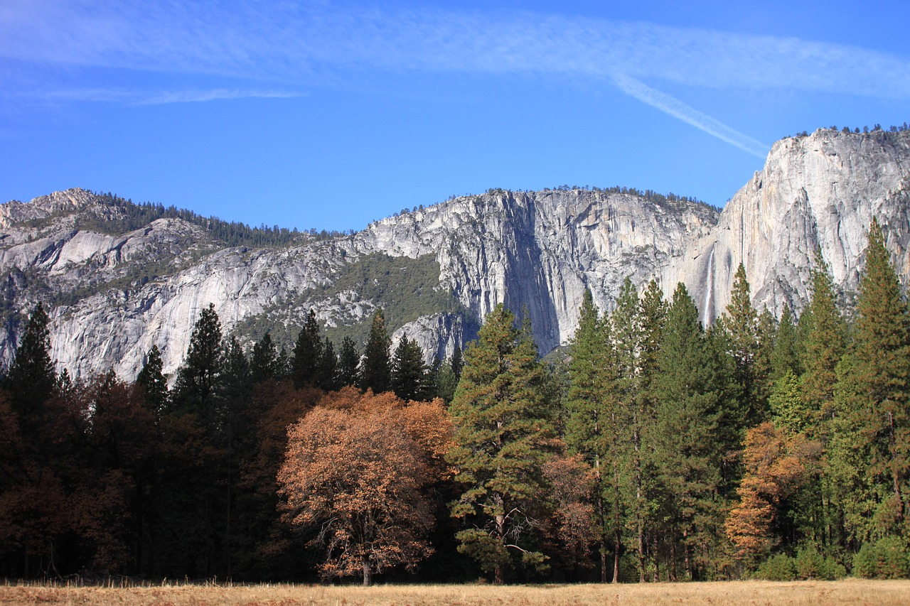 yosemite  national park  wood free photo