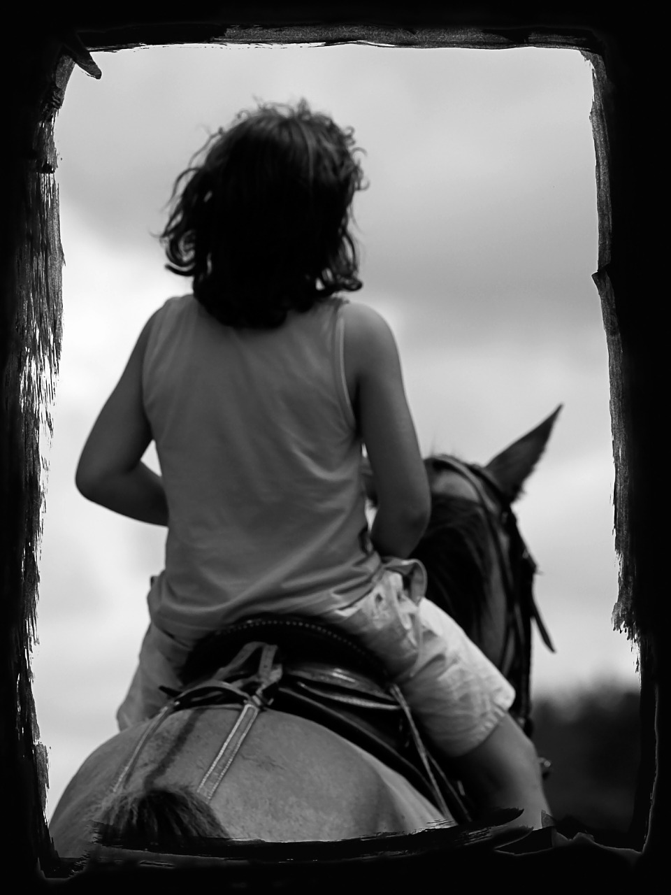 young boy horse free photo
