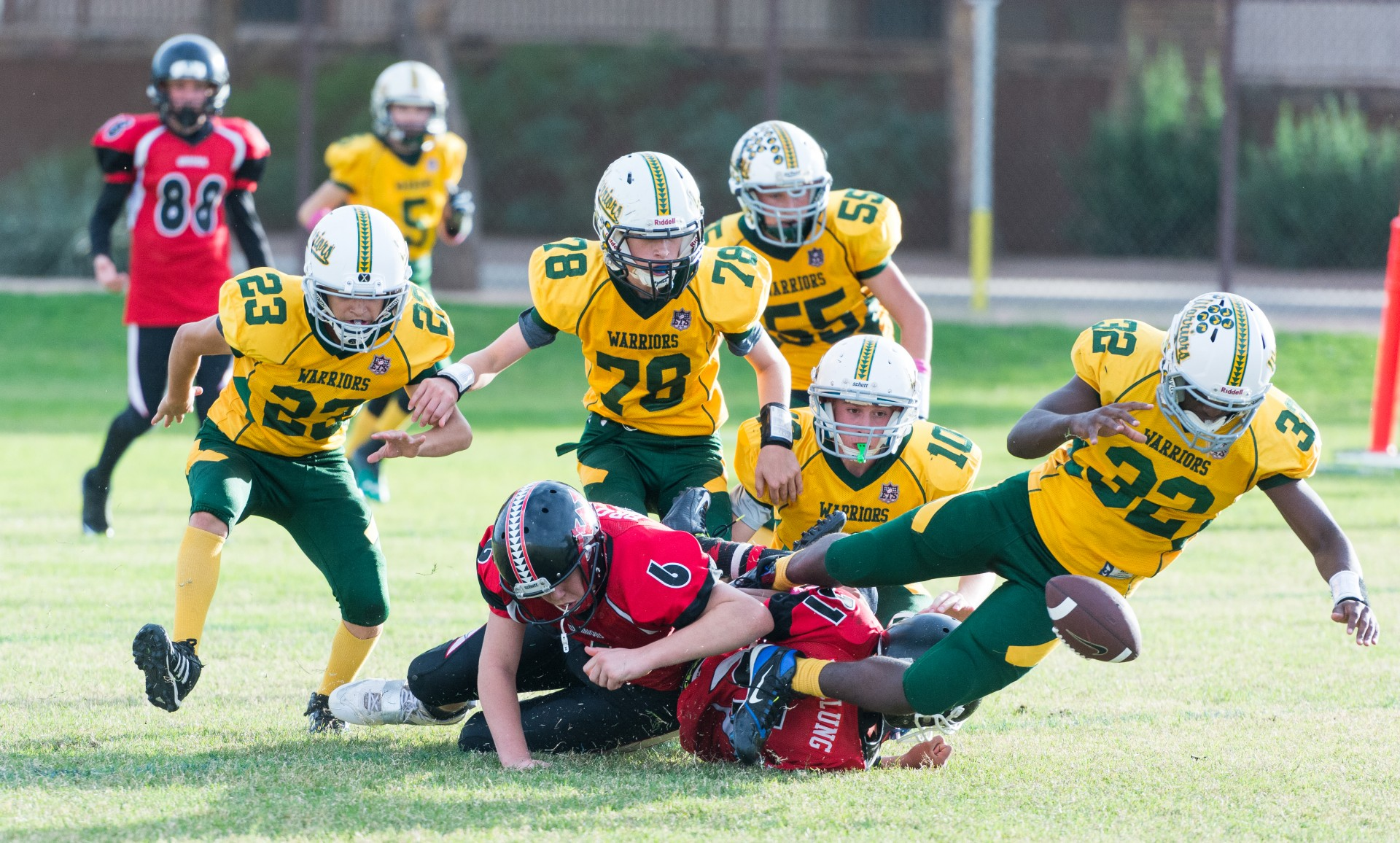 youth sports football free photo