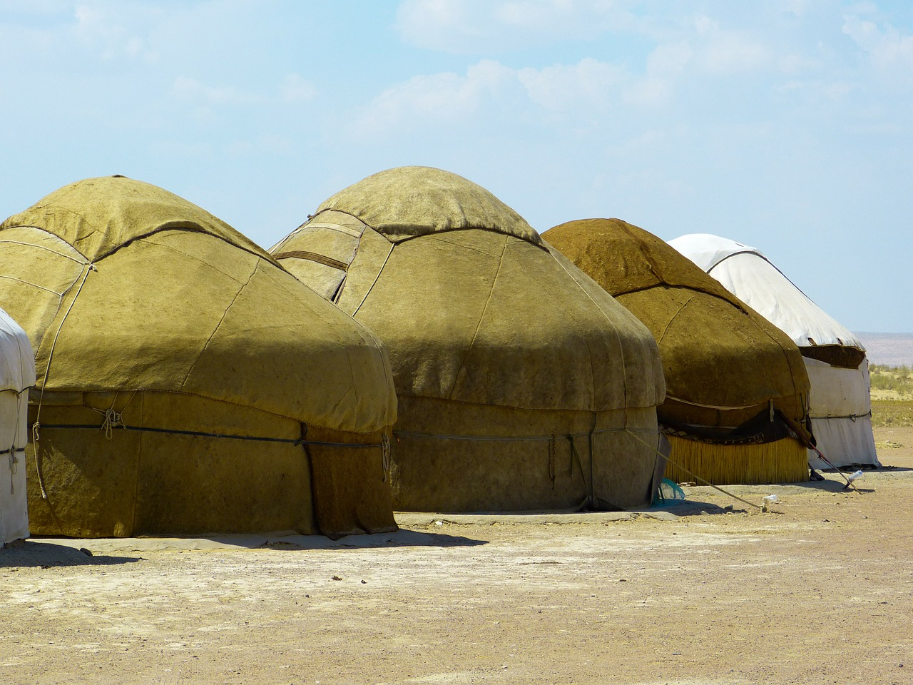 yurt tent residential structure free photo