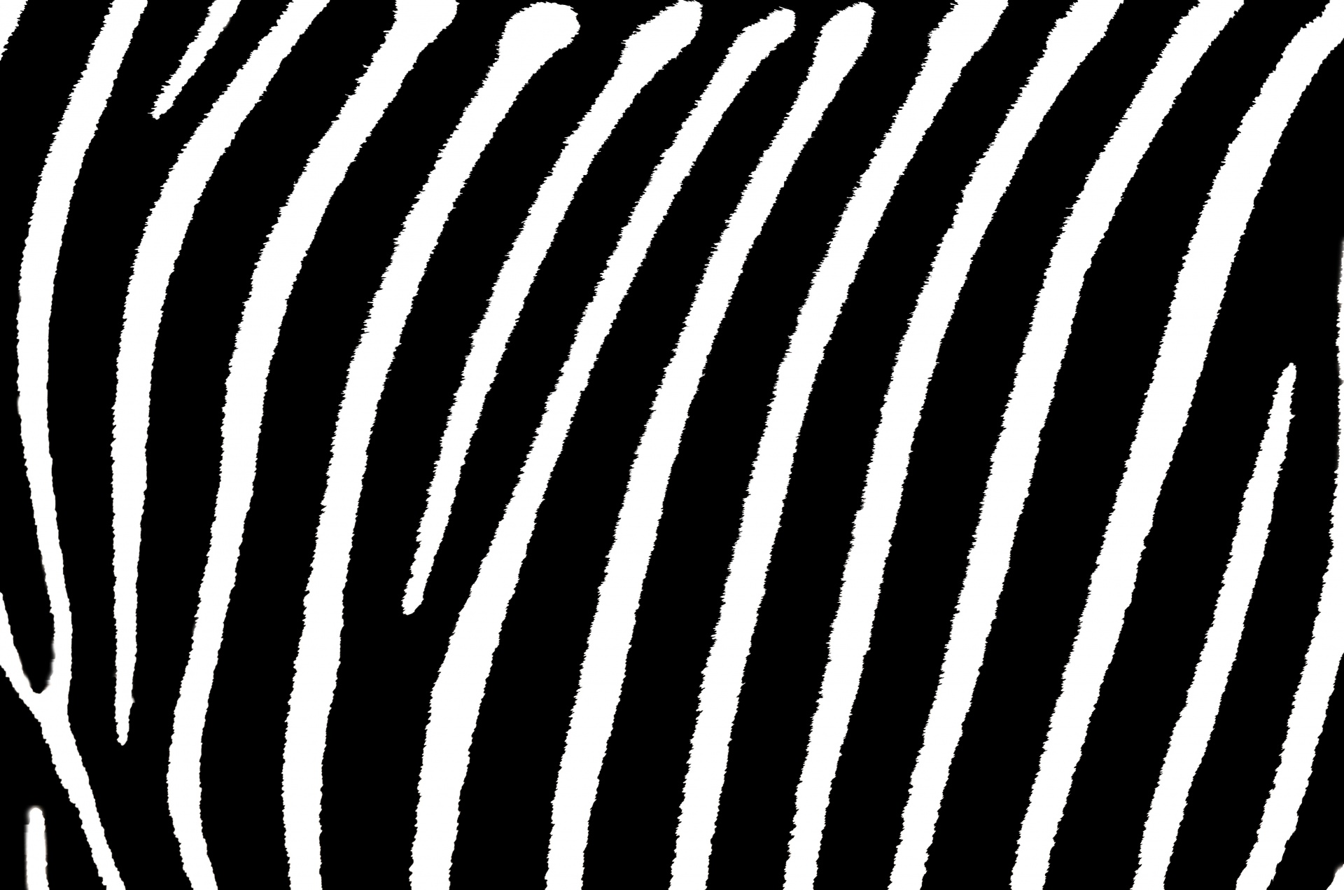 striped zebra stripes background
