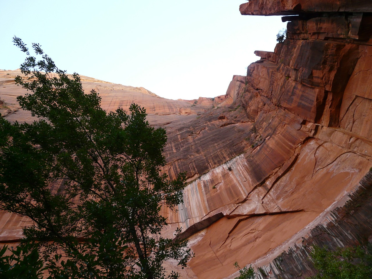 zion national park national park wall free photo