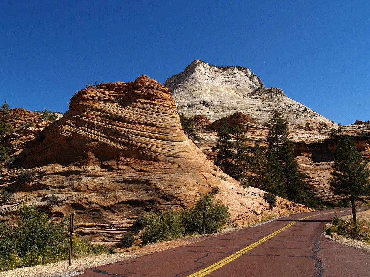 zion national park utah usa free photo