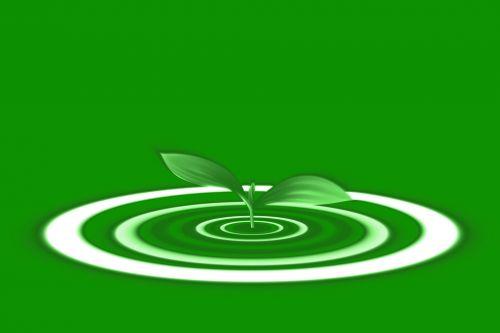 lapai, ekologija, dygsta, pradėti, fonas, mėlynas, ratas, žolė, žolelės, ekologija