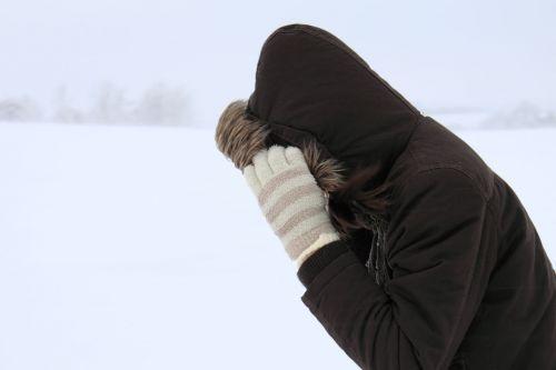 Walking In Blizzard