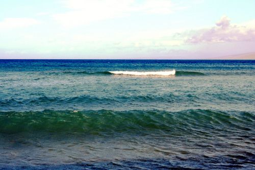 Rolling Waves In Maui