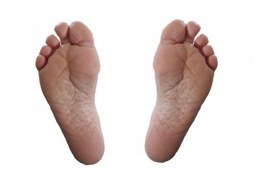 2 Feet