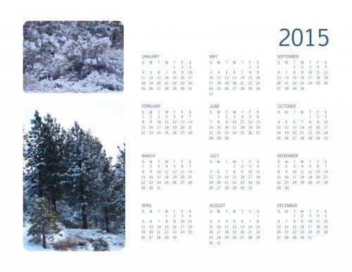 2015 Annual Calendar Winter