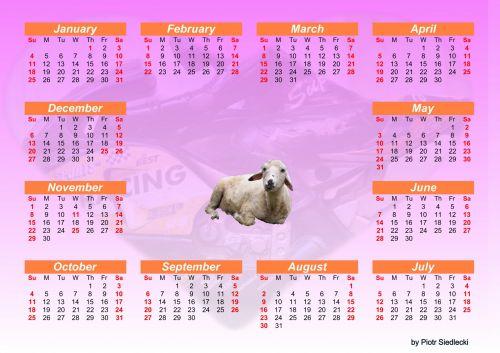 2015 Calendar 2