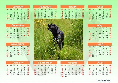 2015 Calendar 3