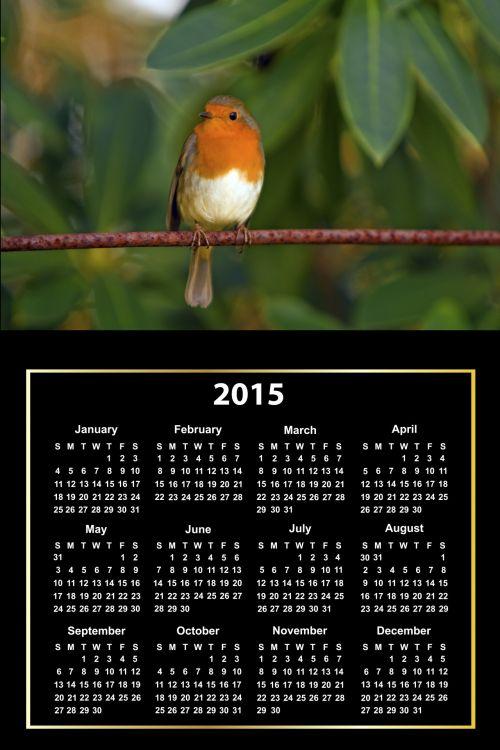 2015 Calendar Cute Bird
