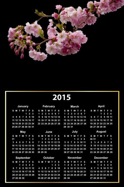 2015 Calendar Pink Blossom
