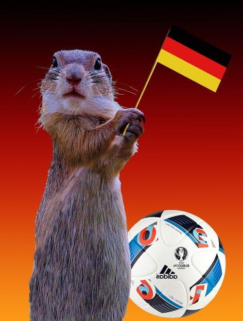 2016 germany flag european championship