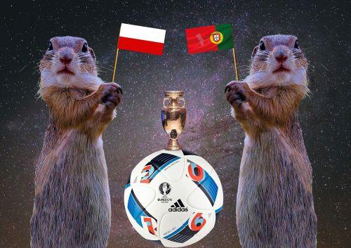 2016 quarter-finals football