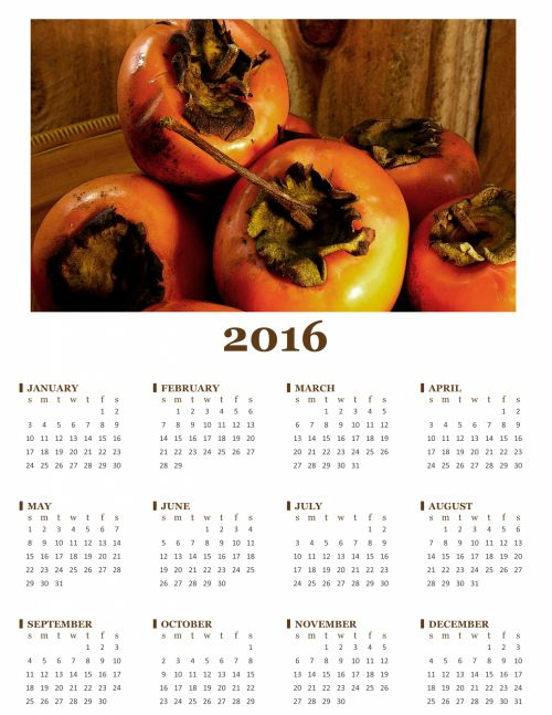 2016 Annual Persimmon Calender
