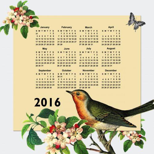 2016 Calendar Vintage Bird