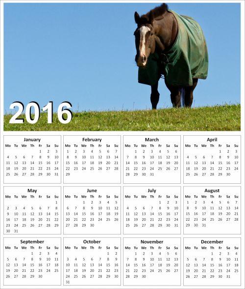 2016 Horse Calendar