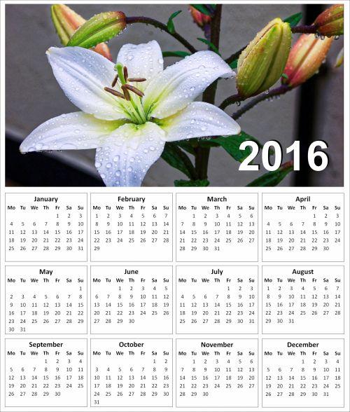 2016 Lily Calendar