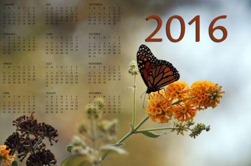 2016 Monarch Butterfly Calendar #2
