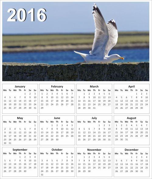 2016 Seagull Calendar